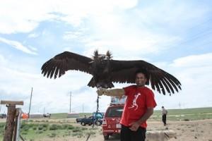eagle dare small